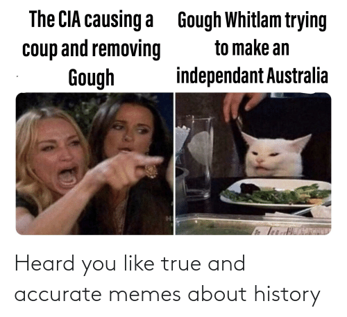 You Like: Heard you like true and accurate memes about history