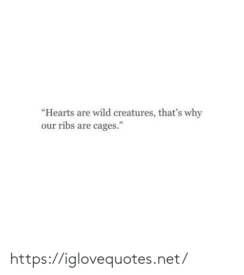 """Hearts, Wild, and Net: """"Hearts are wild creatures, that's why  our ribs are cages."""" https://iglovequotes.net/"""