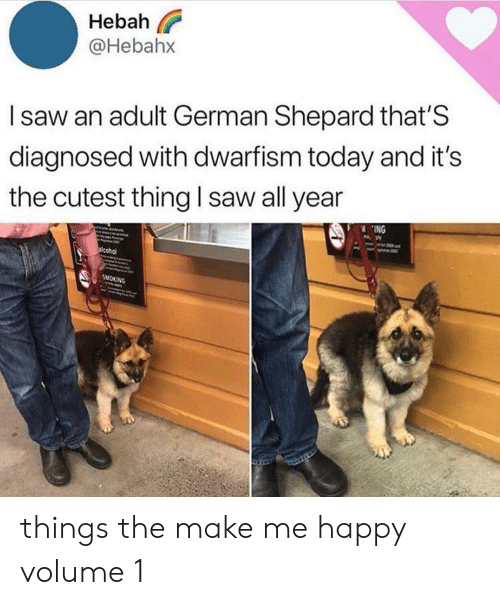Saw, Smoking, and Happy: Hebah  @Hebahx  Isaw an adult German Shepard that'S  diagnosed with dwarfism today and it's  the cutest thing I saw all year  ING  acohol  SMOKING things the make me happy volume 1