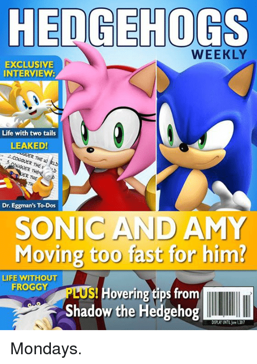 Hedgehoging: HEDGEHOGS  WEEKLY  EXCLUSIVE  INTERVIEW:  Life with two tails  LEAKED!  UNGVER THE w  ONGUER TH  Dr. Eggman's To-Dos  SONIC AND AMY  Moving too fast for him?  LIFE WITHOUT  FROGGY  S overing tips from  Shadow the Hedgehog  DISPLAY UNTIL L211 Mondays.