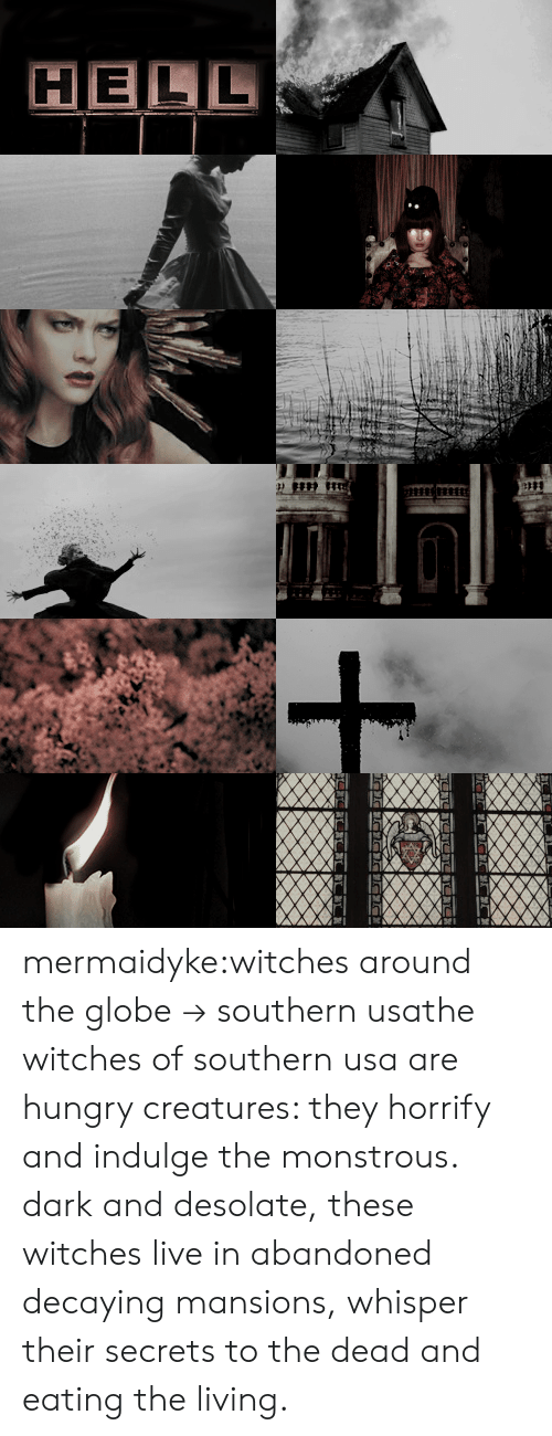 Hungry, Tumblr, and Blog: HELL mermaidyke:witches around the globe→ southern usathe witches of southern usa are hungry creatures: they horrify and indulge the monstrous. dark and desolate,these witches live in abandoned decaying mansions, whisper their secrets to the dead and eating the living.