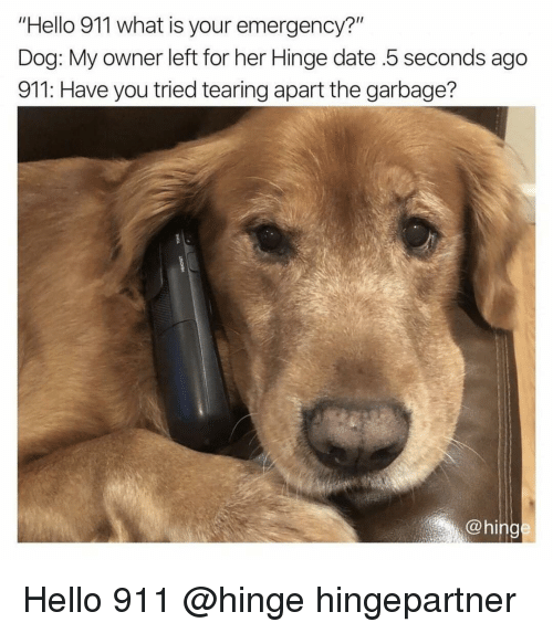 """Funny, Hello, and Date: """"Hello 911 what is your emergency?""""  Dog: My owner left for her Hinge date .5 seconds ago  911: Have you tried tearing apart the garbage?  @hing Hello 911 @hinge hingepartner"""