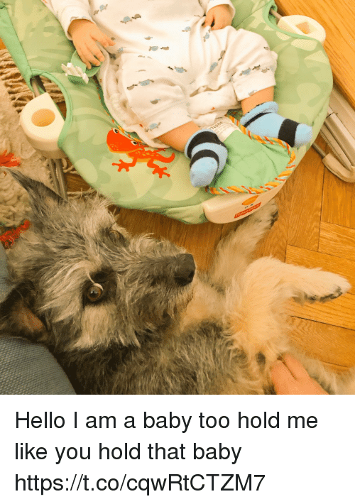 Hello, Memes, and Baby: Hello I am a baby too  hold me like you hold that baby https://t.co/cqwRtCTZM7