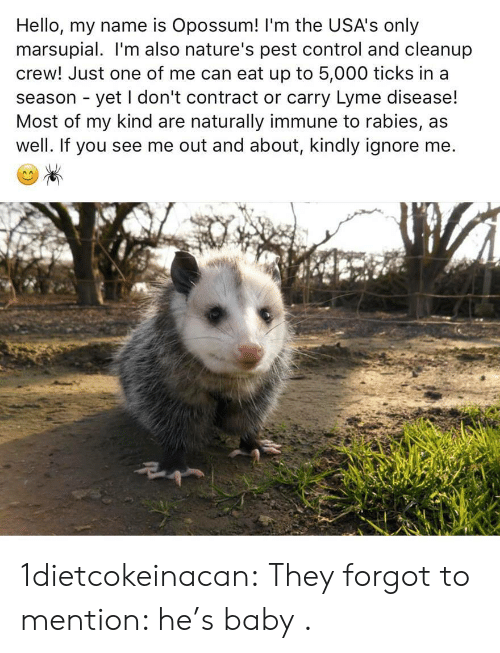 Hello, Target, and Tumblr: Hello, my name is Opossum! 'm the USA's only  marsupial. I'm also nature's pest control and cleanup  crew! Just one of me can eat up to 5,000 ticks in a  season - yet I don't contract or carry Lyme disease!  Most of my kind are naturally immune to rabies, as  well. If you see me out and about, kindly ignore me 1dietcokeinacan: They forgot to mention: he's baby .