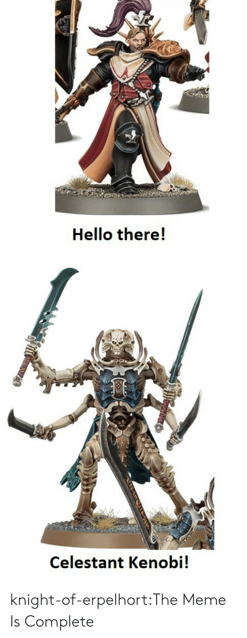 Hello, Meme, and Tumblr: Hello there!  Celestant Kenobi! knight-of-erpelhort:The Meme Is Complete
