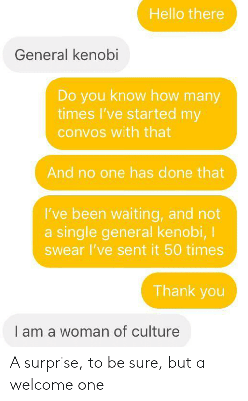 Hello, How Many Times, and Thank You: Hello there  General kenobi  Do you know how many  times I've started my  convos with that  And no one has done that  I've been waiting, and not  a single general kenobi, I  Swear I've sent it 50 times  Thank you  I am a woman of culture A surprise, to be sure, but a welcome one