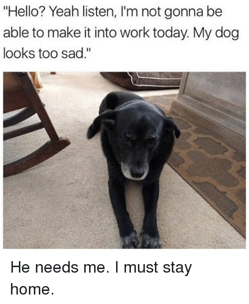 """Funny, Hello, and Yeah: """"Hello? Yeah listen, l'm not gonna be  able to make it into work today. My dog  looks too sad."""" He needs me. I must stay home."""