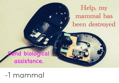 Help, Been, and Mammal: Help, my  mammal has  been destroyed  Send biological  assistance. -1 mammal