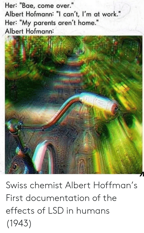 """Chemist: Her: """"Bae, come over.""""  Albert Hofmann: """" can't, I'm at work.""""  Her: """"My parents aren't home.""""  Albert Hofmann:  I1  It Swiss chemist Albert Hoffman's First documentation of the effects of LSD in humans (1943)"""