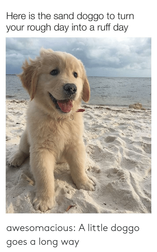 rough day: Here is the sand doggo to turn  your rough day into a ruff day awesomacious:  A little doggo goes a long way
