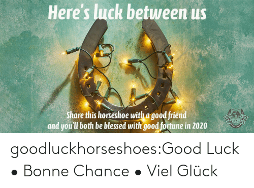 blessed: Here's luck betuween us  LUCK  Share this horseshoe with a good friend  and you'll both be blessed with good fortune in 2020  HORSESHOES goodluckhorseshoes:Good Luck • Bonne Chance • Viel Glück