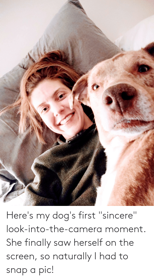"""naturally: Here's my dog's first """"sincere"""" look-into-the-camera moment. She finally saw herself on the screen, so naturally I had to snap a pic!"""