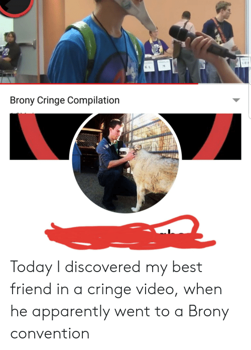 Brony Cringe: Heve dovelare  Brony Cringe Compilation Today I discovered my best friend in a cringe video, when he apparently went to a Brony convention