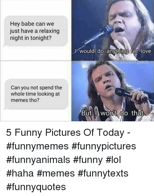 Funny, Lol, and Love: Hey babe can we  just have a relaxing  night in tonight?  I would do anvthing for love  Can you not spend the  whole time looking at  memes tho?  But wonit do that  0 5 Funny Pictures Of Today - #funnymemes #funnypictures #funnyanimals #funny #lol #haha #memes #funnytexts #funnyquotes