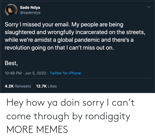 Sorry: Hey how ya doin sorry I can't come through by rondiggity MORE MEMES
