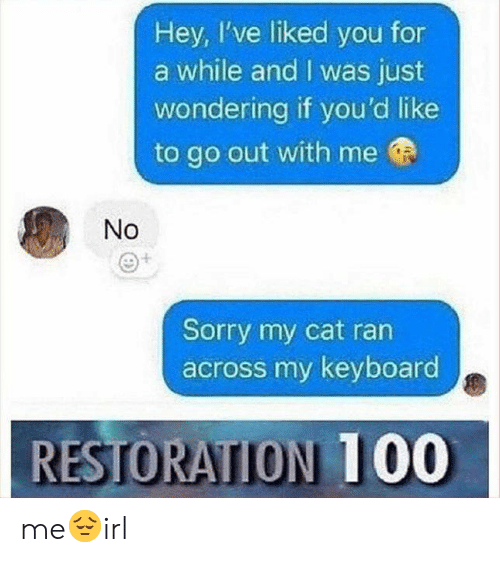 Sorry, Keyboard, and Cat: Hey, I've liked you for  a while and I was just  wondering if you'd like  to go out with me  No  Sorry my cat ran  across my keyboard  RESTORATION 1 00 me😔irl