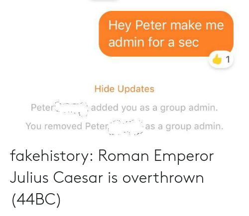 Admin: Hey Peter make me  admin for a sec  1  Hide Updates  Peter  added you as a group admin.  You removed Peter.  as a group admin fakehistory: Roman Emperor Julius Caesar is overthrown (44BC)