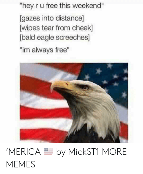 "Dank, Memes, and Target: ""hey r u free this weekend""  [gazes into distance]  wipes tear from cheek]  bald eagle screeches]  ""im always free"" 'MERICA 🇺🇸 by MickST1 MORE MEMES"