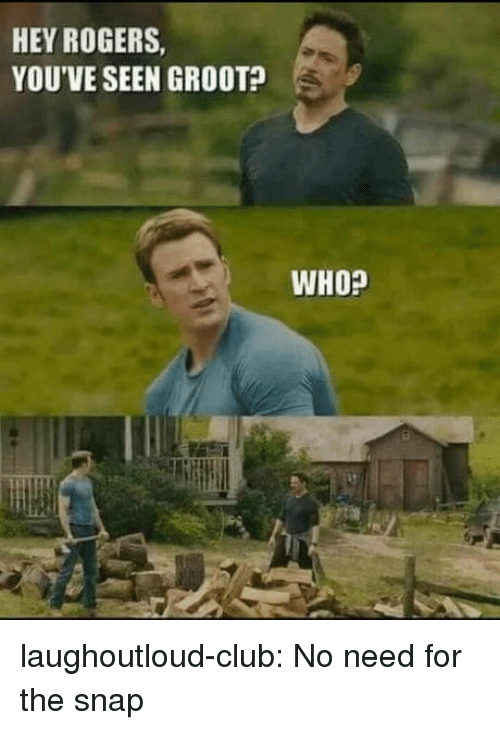 Club, Tumblr, and Blog: HEY ROGERS  YOU'VE SEEN GROOT?  WHO? laughoutloud-club:  No need for the snap