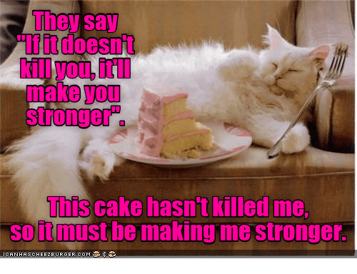 "Cake, Com, and Make: hey say  ""If it doesnt  make you  stronger .  This cake hasn't killed me,  soitmust  be making me stronger  ICANHACHEE2E URGER.COM"