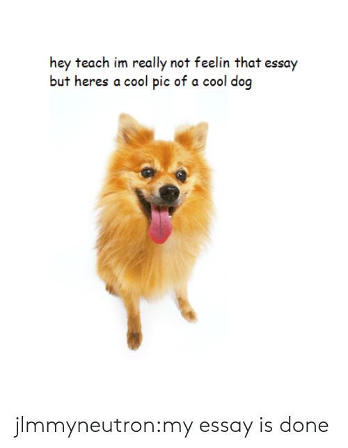 Target, Tumblr, and Blog: hey teach im really not feelin that essay  but heres a cool pic of a cool dog jlmmyneutron:my essay is done