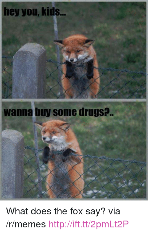 """The Fox Say: hey you, kids..  wanna buy some drugs?. <p>What does the fox say? via /r/memes <a href=""""http://ift.tt/2pmLt2P"""">http://ift.tt/2pmLt2P</a></p>"""