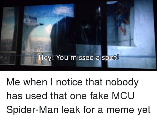 Fake, Meme, and Spider: Hey! You missed a spot!