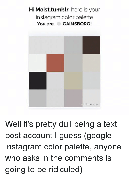 ridiculed: Hi Moist.tumblr, here is your  instagram color palette  You are GAINSBORO!  lorkaler.com Well it's pretty dull being a text post account I guess (google instagram color palette, anyone who asks in the comments is going to be ridiculed)