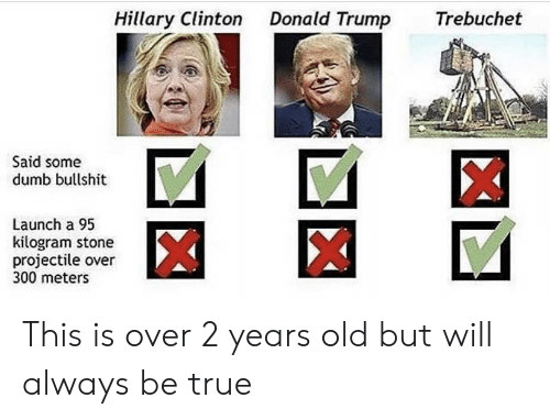 Donald Trump, Dumb, and Hillary Clinton: Hillary Clinton Donald Trump Trebuchet  Said somee  dumb bullshit  Launch a 95  kilogram stone  projectile over  300 meters This is over 2 years old but will always be true