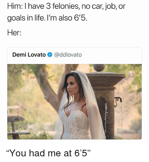 """Goals In Life: Him: I have 3 felonies, no car, job, or  goals in life. I'm also b  Her:  Demi Lovato@ddlovato """"You had me at 6'5"""""""