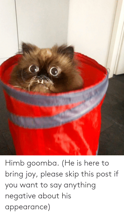 His: Himb goomba. (He is here to bring joy, please skip this post if you want to say anything negative about his appearance)