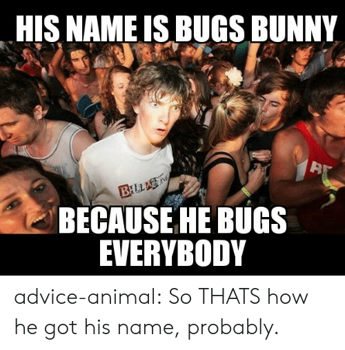 bunny: HIS NAME IS BUGS BUNNY  BILLA  BECAUSE HE BUGS  EVERYBODY advice-animal:  So THATS how he got his name, probably.