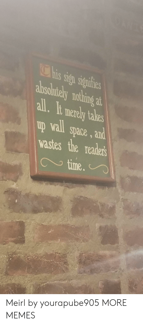 merely: his sign signifies  absolntely nothing  at  all.It merely takes  up wall space, and  wastes the readers  time.  9 Meirl by yourapube905 MORE MEMES