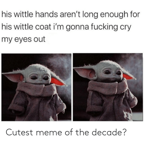 Fucking, Meme, and Cry: his wittle hands aren't long enough for  his wittle coat i'm gonna fucking cry  my eyes out Cutest meme of the decade?