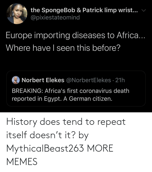 Itself: History does tend to repeat itself doesn't it? by MythicalBeast263 MORE MEMES