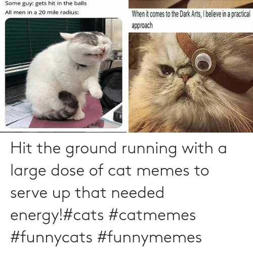 Energy: Hit the ground running with a large dose of cat memes to serve up that needed energy!#cats #catmemes #funnycats #funnymemes
