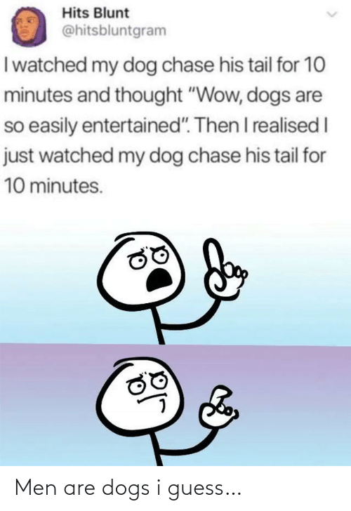 """My Dog: Hits Blunt  @hitsbluntgram  I watched my dog chase his tail for 10  minutes and thought """"Wow, dogs are  so easily entertained"""". Then I realised I  just watched my dog chase his tail for  10 minutes. Men are dogs i guess…"""