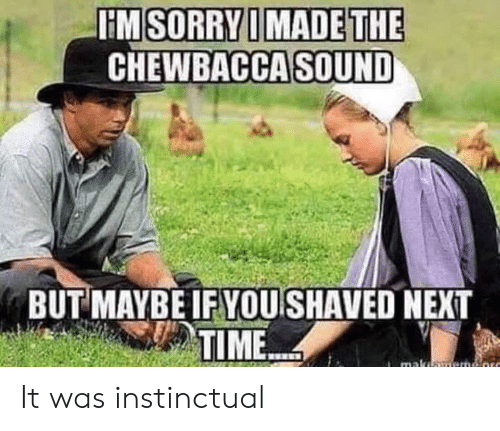 But Maybe: HM SORRY I MADE THE  CHEWBACCA SOUND  BUT MAYBE IF YOU SHAVED NEXT  TIME  maka It was instinctual