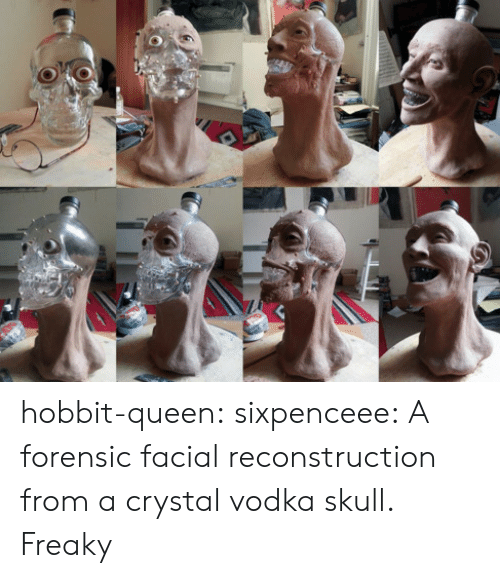 Tumblr, Queen, and Blog: hobbit-queen:  sixpenceee:  A forensic facial reconstruction from a crystal vodka skull.   Freaky