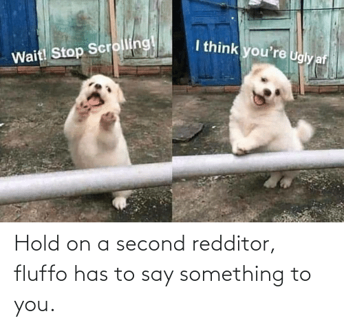 hold: Hold on a second redditor, fluffo has to say something to you.