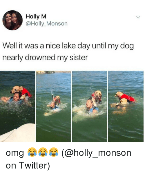 Memes, Omg, and Twitter: Holly M  @Holly_Monson  Well it was a nice lake day until my dog  nearly drowned my sister omg 😂😂😂 (@holly_monson on Twitter)