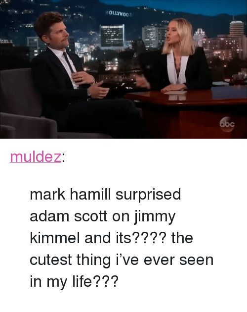 "Adam Scott, Life, and Mark Hamill: HOLLYWOO <p><a href=""http://muldez.tumblr.com/post/160326250577/mark-hamill-surprised-adam-scott-on-jimmy-kimmel"" class=""tumblr_blog"">muldez</a>:</p><blockquote><p>mark hamill surprised adam scott on jimmy kimmel and its???? the cutest thing i've ever seen in my life???</p></blockquote>"