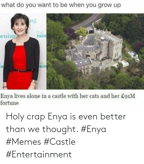 crap: Holy crap Enya is even better than we thought. #Enya #Memes #Castle #Entertainment