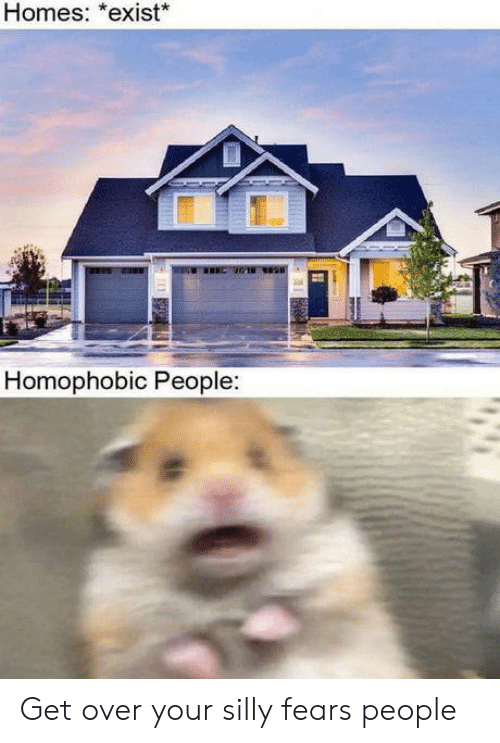 silly: Homes: *exist*  R  Homophobic People:  amnn Get over your silly fears people