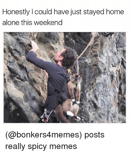 Funny, Meme, and Weekender: Honestly Icould have just stayed home  alone this weekend (@bonkers4memes) posts really spicy memes
