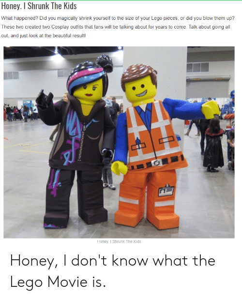 Honey, I Shrunk the Kids: Honey. I Shrunk The Kids  What happened? Did you magically shrink yourself to the size of your Lego pieces, or did you blow them up?  These two created two Cosplay outfits that fans will be talking about for years to come. Talk about going all  out, and just look at the beautiful result!  Honey. I Shrunk The Kids Honey, I don't know what the Lego Movie is.