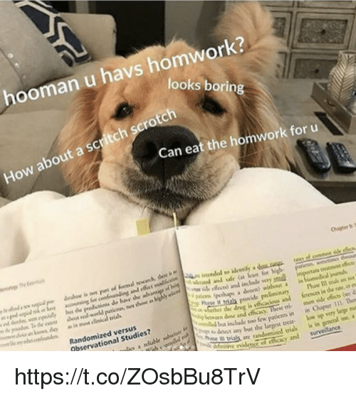 "Memes, Drug, and 🤖: hooman u havs homwork?  ooks borin  How about a scritch scrotch  Can eat the homwork for u  Chapter 9T  enfundinguladotaddaleutnedmd to elentify.dau艸  and ettect us ed bs  ed dodn wen oidly bot the produstions do have the  Mtuted and fe (at ast for high peens, wometinc  id ffeces) and include vey ul  nos those as  y  as in ment clinical wias  It trials provide preliminary Phase I1 urials an  Randomized versus  Observational Studies?  r he drug is eficacious and ferenoes in dhe rate, or o  tri mon side ets (er  in Chupser 11). The  İ"",-ton,db a induk too few patients in  D trials, arey and  he ai t any but the larpot treat.ow up very lurge  heaitive evidense of cthicasy and surveillance https://t.co/ZOsbBu8TrV"
