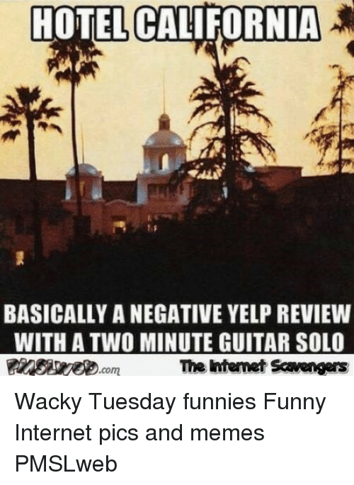 Funny, Internet, and Memes: HOTEL CALIFORNIA  SAE  BASICALLY A NEGATIVE YELP REVIEWW  WITH A TWO MINUTE GUITAR SOLO  The htemet Scavengers <p>Wacky Tuesday funnies  Funny Internet pics and memes  PMSLweb </p>
