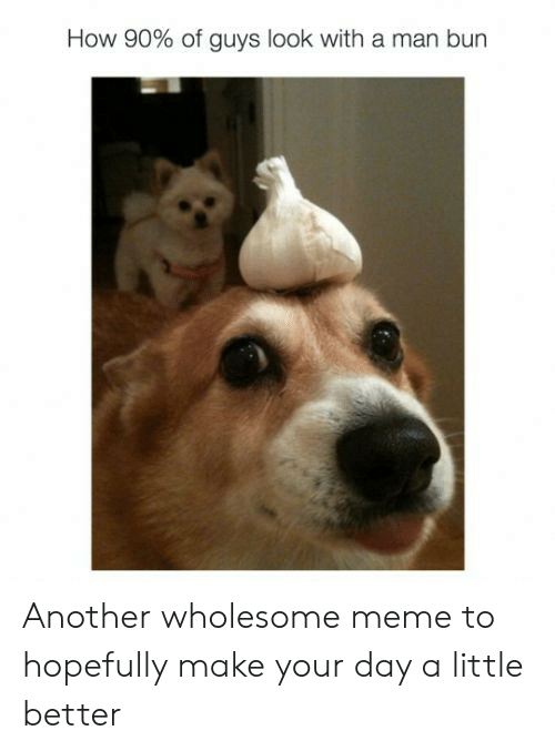 Man Bun, Meme, and Reddit: How 90% of guys look with a man bun Another wholesome meme to hopefully make your day a little better