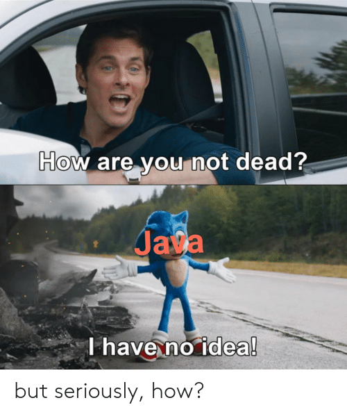 Java: How are you not dead?  Java  T have no idea! but seriously, how?